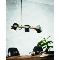 Luminaire en suspension EGLO HORNWOOD