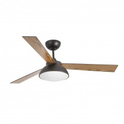 FARO RODAS LED Marron Ventilateur de plafond