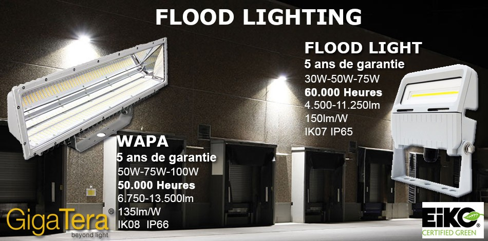 Flood Light GigaTera